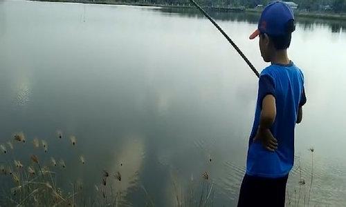 Cậu bé câu hàng loạt cá bống kiếm 100.000 đồng một ngày