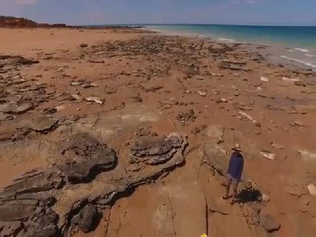 Dấu chân khủng long khổng lồ trên bãi biển Australia