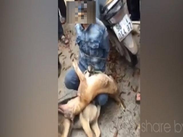 Bắt được trộm chó ở Bắc Giang, người dân hiền lành không đánh