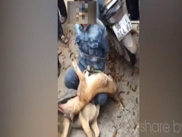 Dân trói kẻ trộm chó vào cột ở Nhà văn hóa
