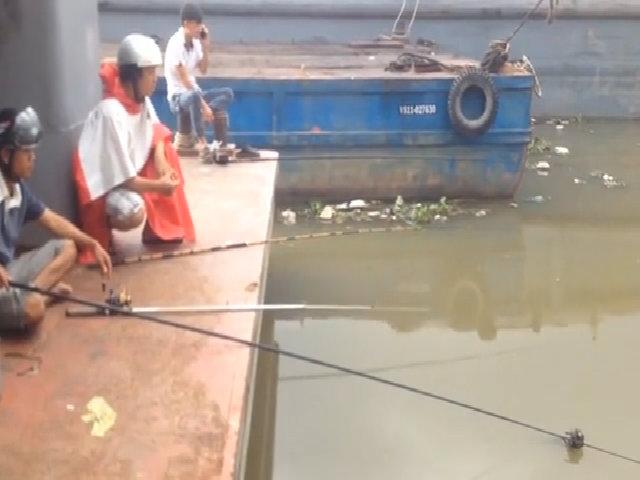 Ba 'sát thủ' giật cá trê liên tục trên sông Sài Gòn