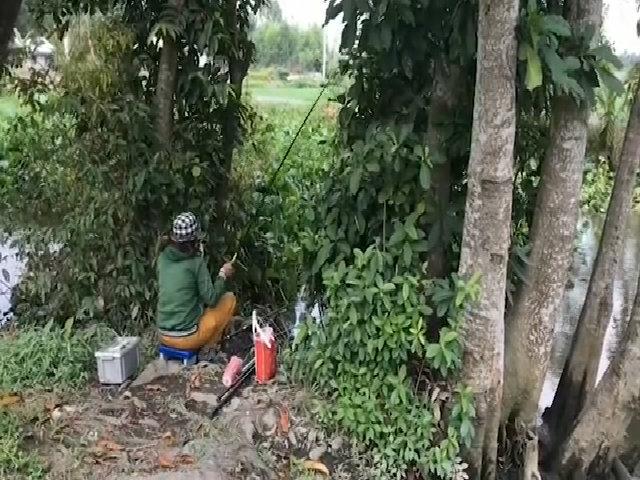 Nữ cao thủ giật cá trê liên tục trên sông Sài Gòn
