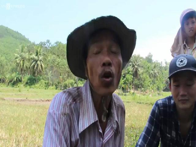 Tay trần phá đá, bắt ong lấy mật ở Quảng Nam