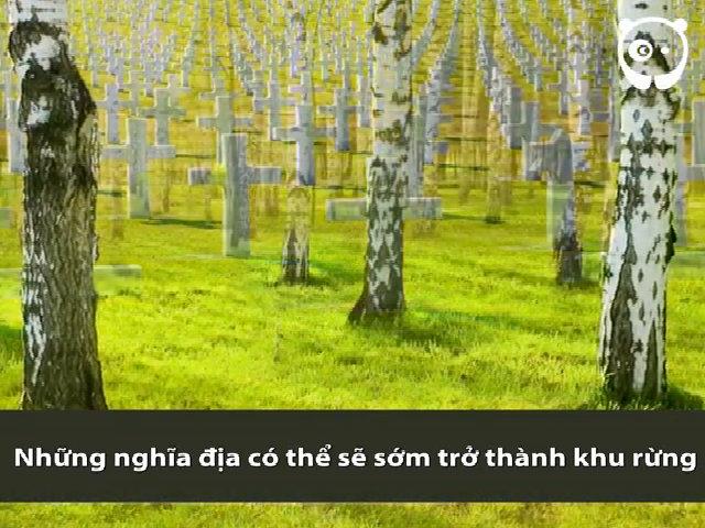 Những sáng kiến biến người chết thành cây xanh