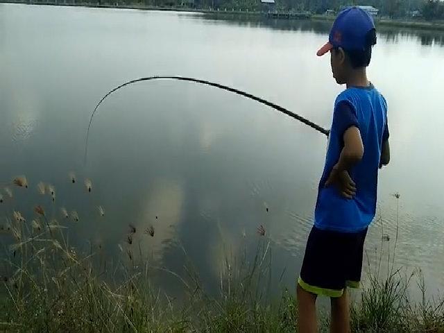Cậu bé câu cá bống kiếm 100.000 đồng một ngày