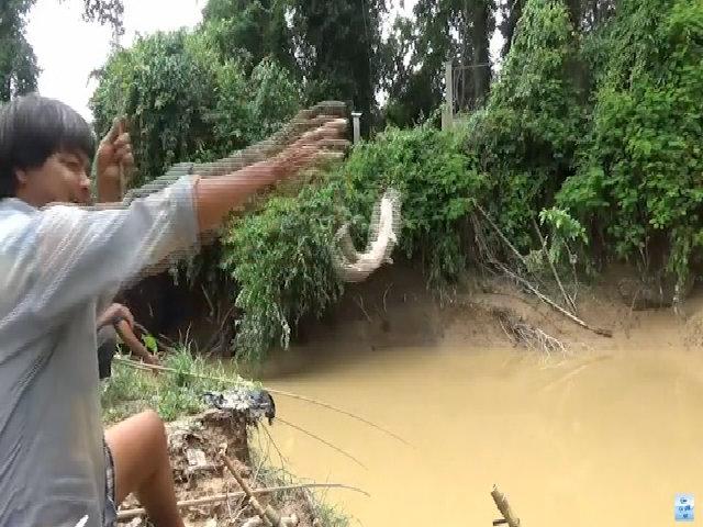 'Cao thủ' đặt 11 cần câu, giật cá trê liên tục trên sông