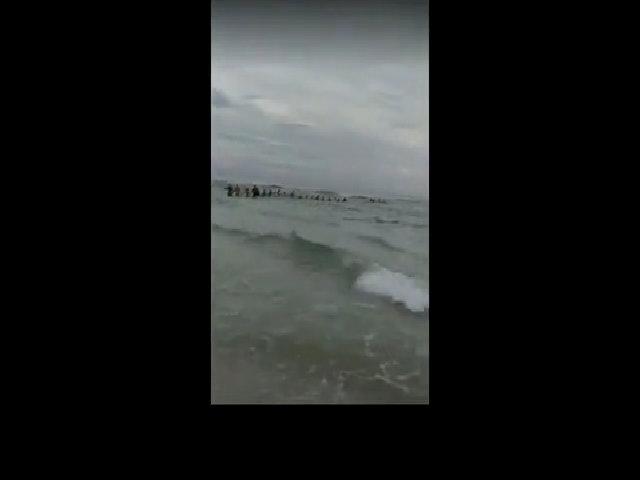 80 người nắm tay cứu gia đình kẹt trong sóng dữ ở Florida