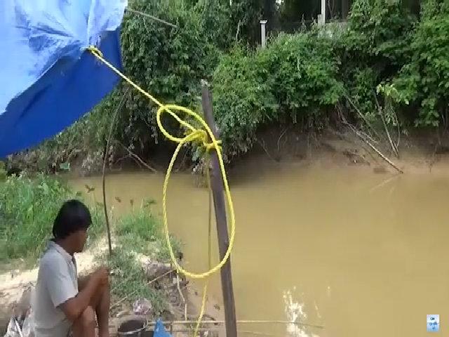 Cao thủ giật cá rô phi liên tục ở trên sông