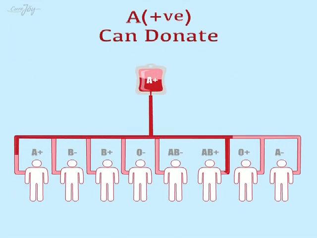 Người mang nhóm máu hiếm AB nhận và truyền được cho ai?