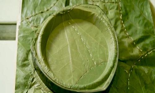 Đĩa ăn tự hủy giá 11.000 đồng làm bằng lá cây
