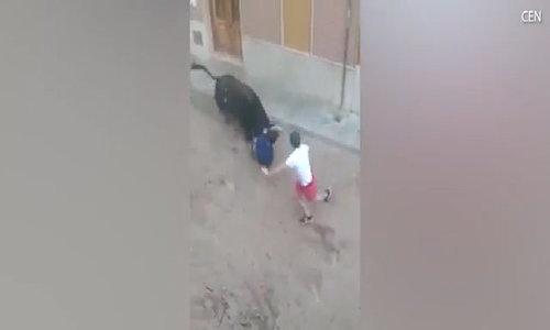 Người đàn ông bị bò tót húc chết trong lễ hội ở Tây Ban Nha