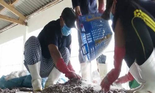 Nha Trang sản xuất 5 triệu lít nước mắm hàng năm