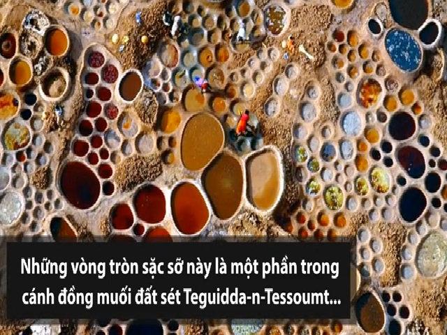 Cánh đồng muối sặc sỡ nằm giữa sa mạc Sahara