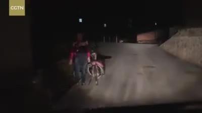 Cậu bé cúi người cám ơn tài xế chiếu đèn pha soi đường