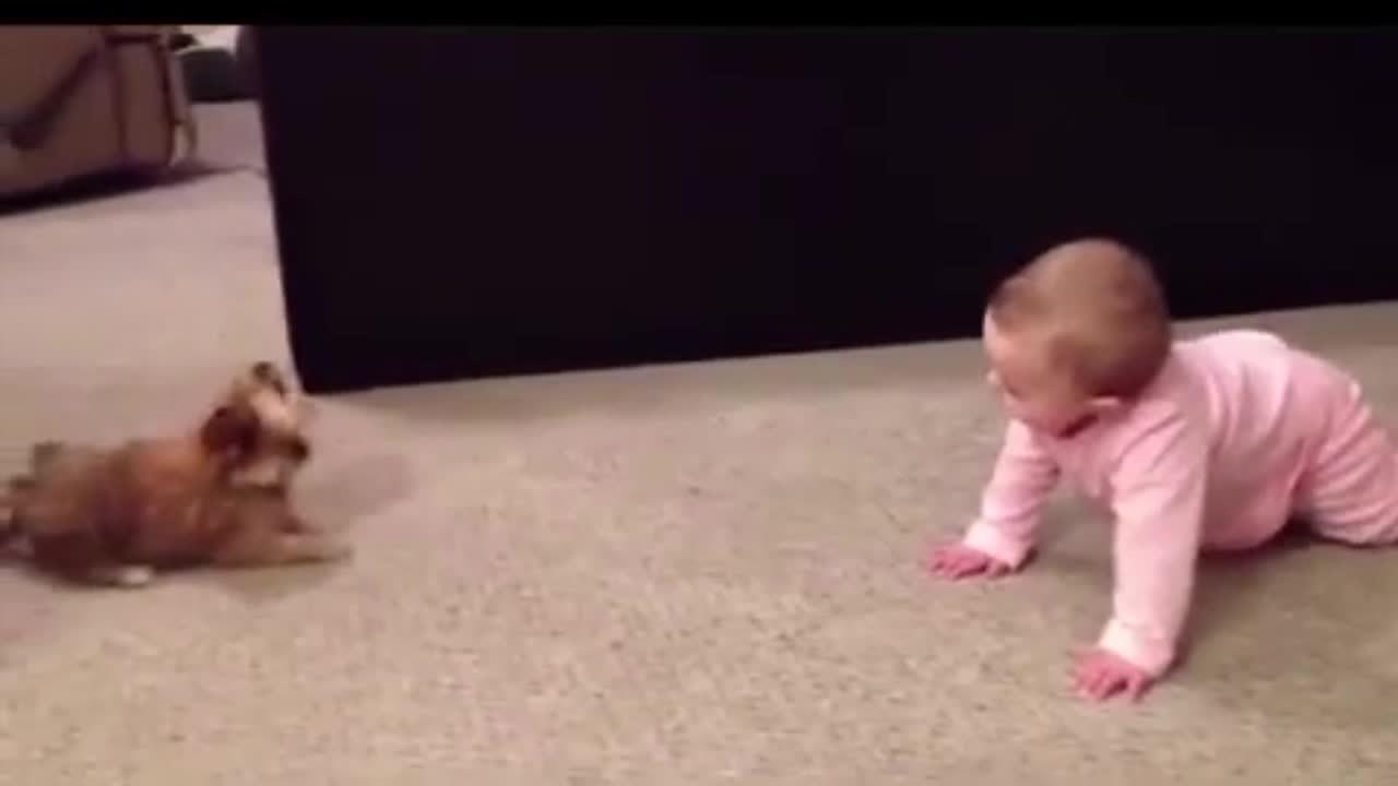Em bé hồn nhiên 'cãi nhau' với cún cưng