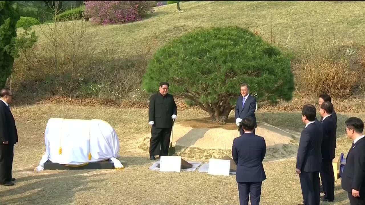 Lãnh đạo Hàn - Triều cùng trồng cây thông, dạo quanh khu phi quân sự