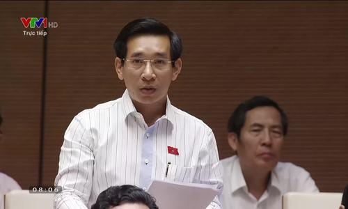 Đại biểu Nguyễn Vanh Cảnh - Bình Định