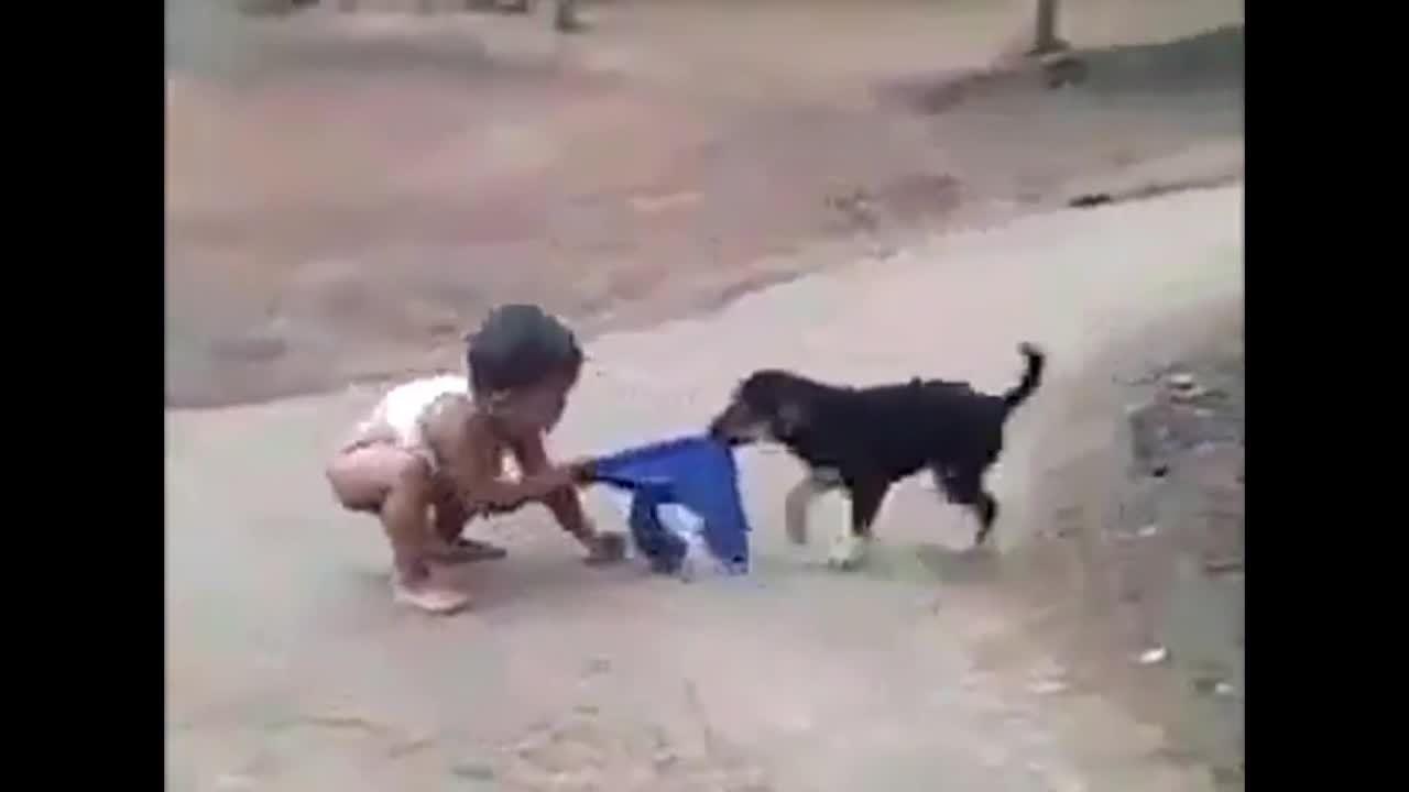 Cậu bé 'khốn khổ' vì bị cún cưng lấy mất quần