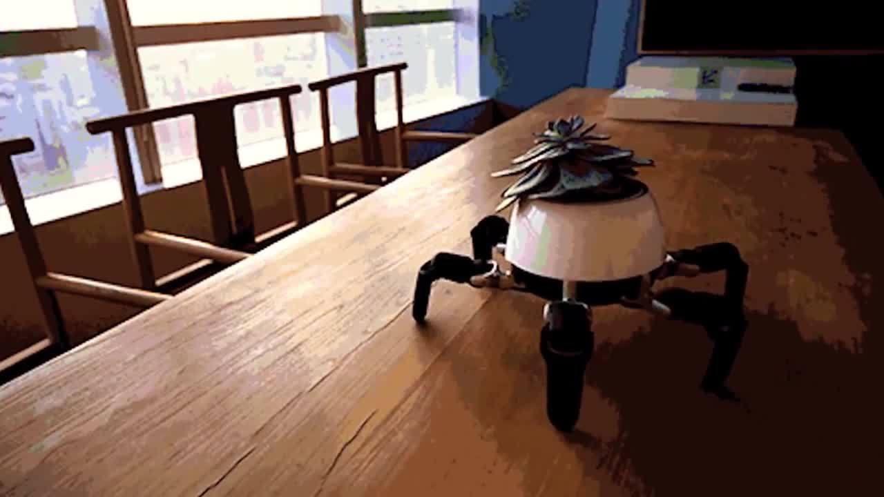 Robot tự động đưa cây trồng trong nhà tới nơi có ánh nắng