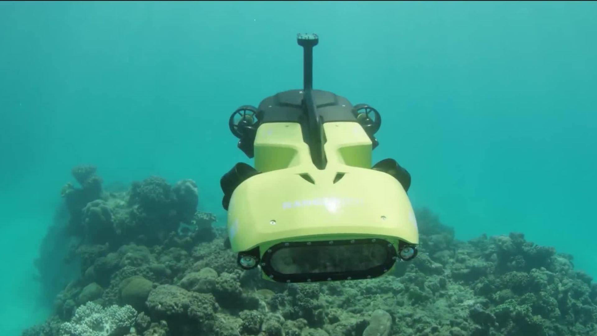 Australia trình làng robot diệt sao biển bảo vệ san hô