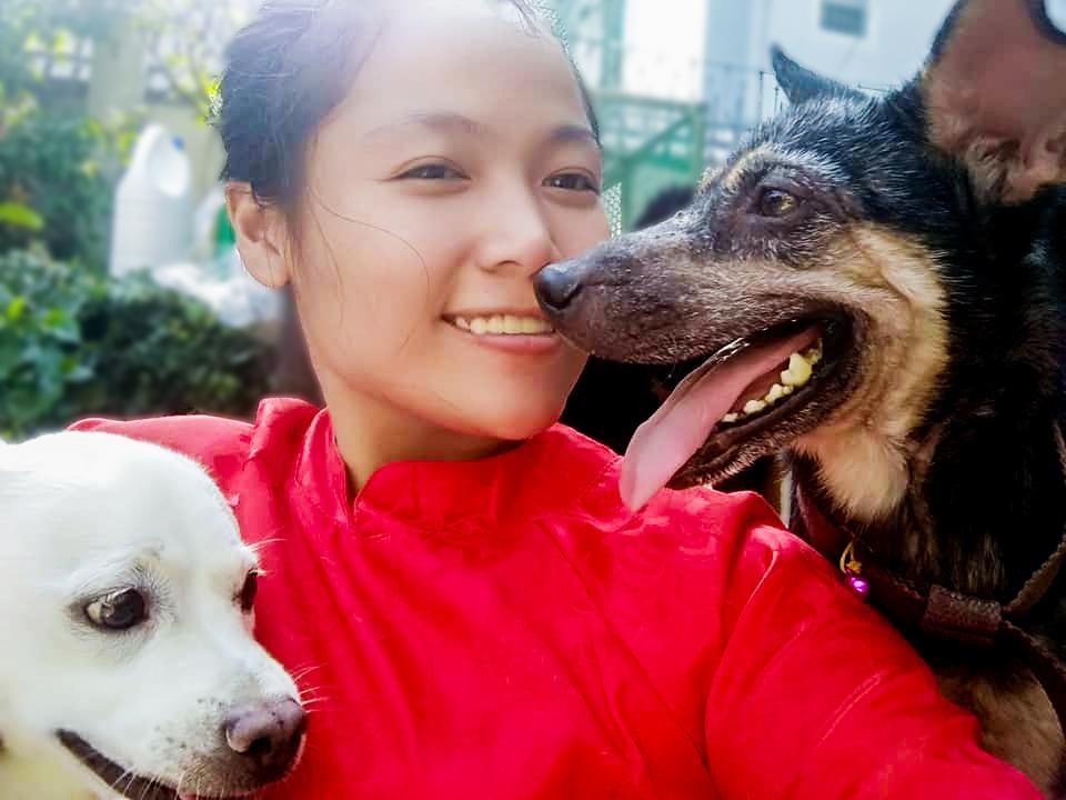 Cô gái Sài Gòn nuôi dưỡng gần 100 chú chó bệnh tật