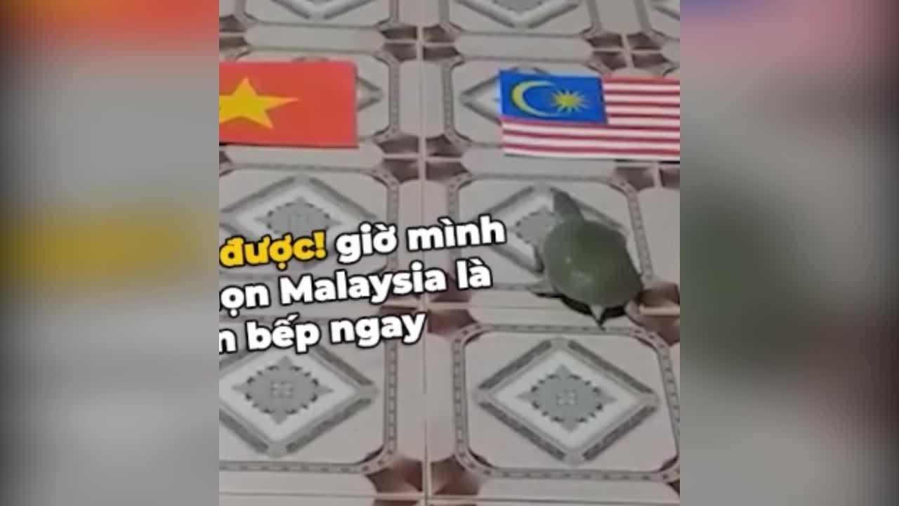 Ba ba đánh lái siêu phàm chọn Việt Nam chiến thắng