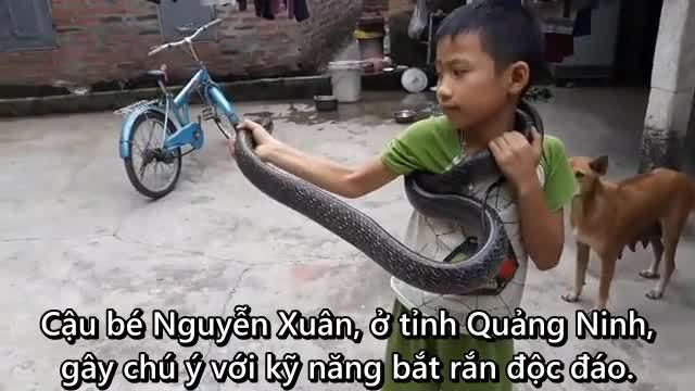 Bé trai Việt tay không bắt rắn 2 mét gây kinh ngạc trên báo nước ngoài