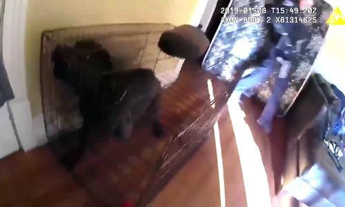 Cảnh sát Mỹ bắn nhầm nữ đồng nghiệp vì sợ chó dữ