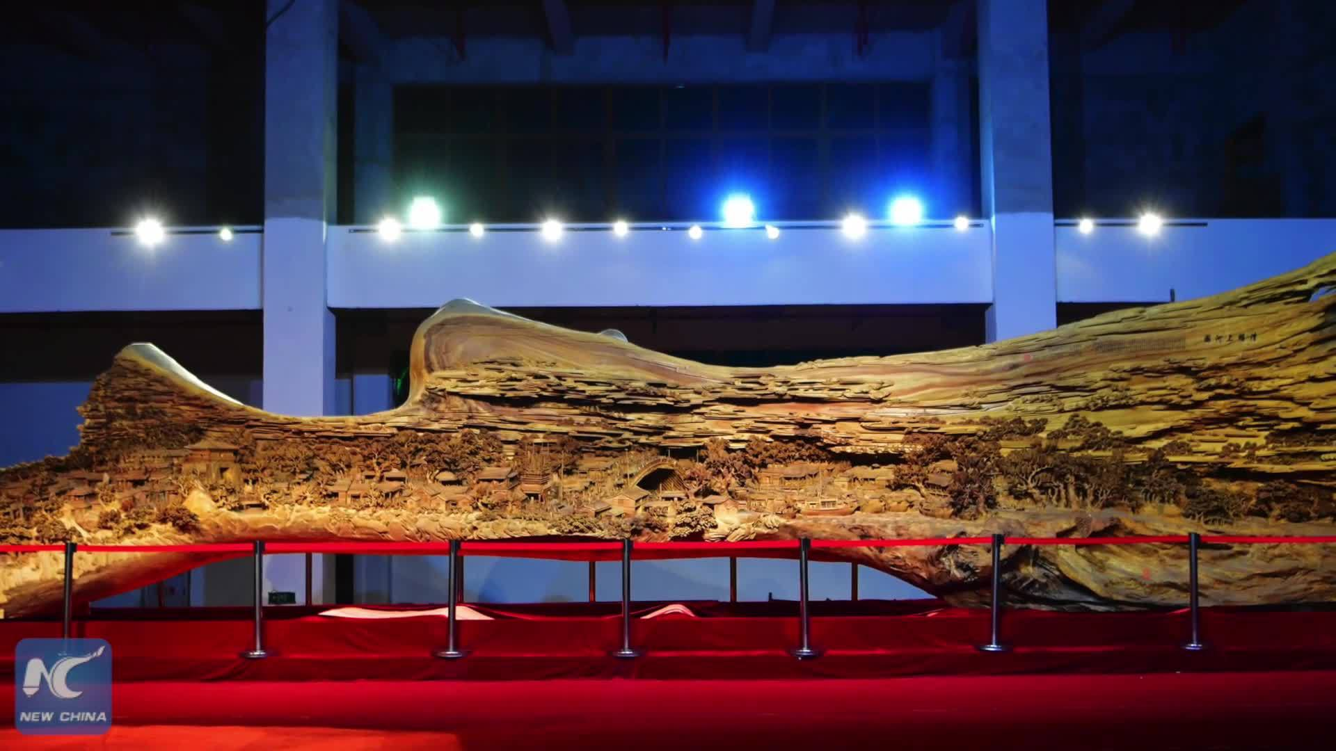 Kỷ lục điêu khắc trên thân cây 1.000 năm tuổi