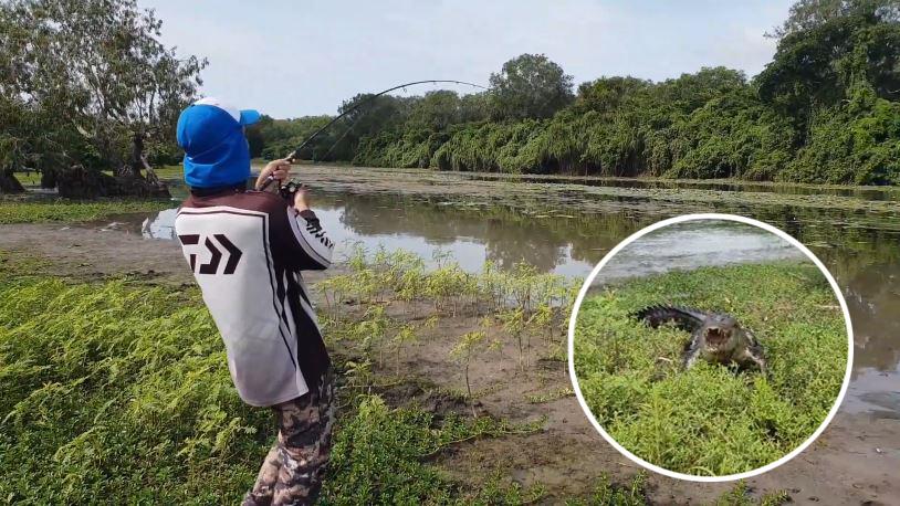 Câu được cá lớn, cần thủ tháo chạy do cá sấu rượt đuổi