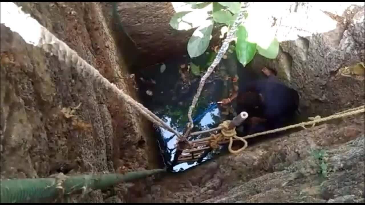 Giải cứu rắn hổ bướm kịch độc mắc kẹt dưới giếng nước