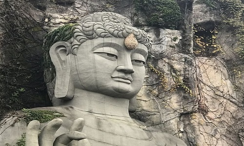 Ong bắp cày làm tổ trên đầu tượng Phật ở Trung Quốc