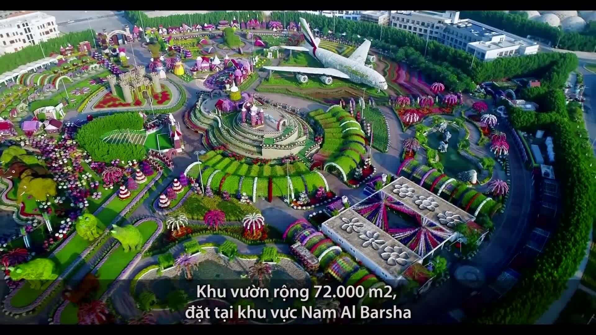 'Thế giới hoa' rộng 72.000 m2 ở Dubai