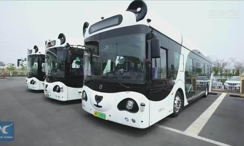Xe buýt thông minh hình gấu trúc lăn bánh ở Thiên Tân