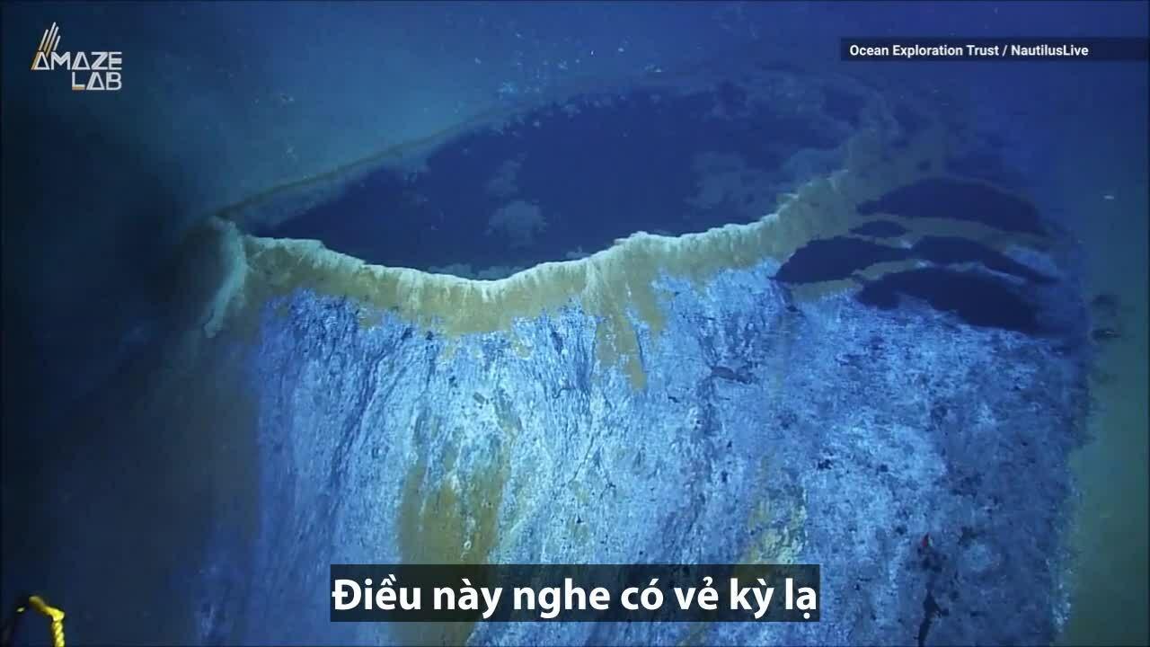 Hồ nước dưới biển giết chết hầu hết động vật bơi đến