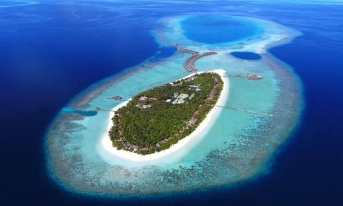 Những hòn đảo hình thành từ phân cá ở thiên đường Maldives