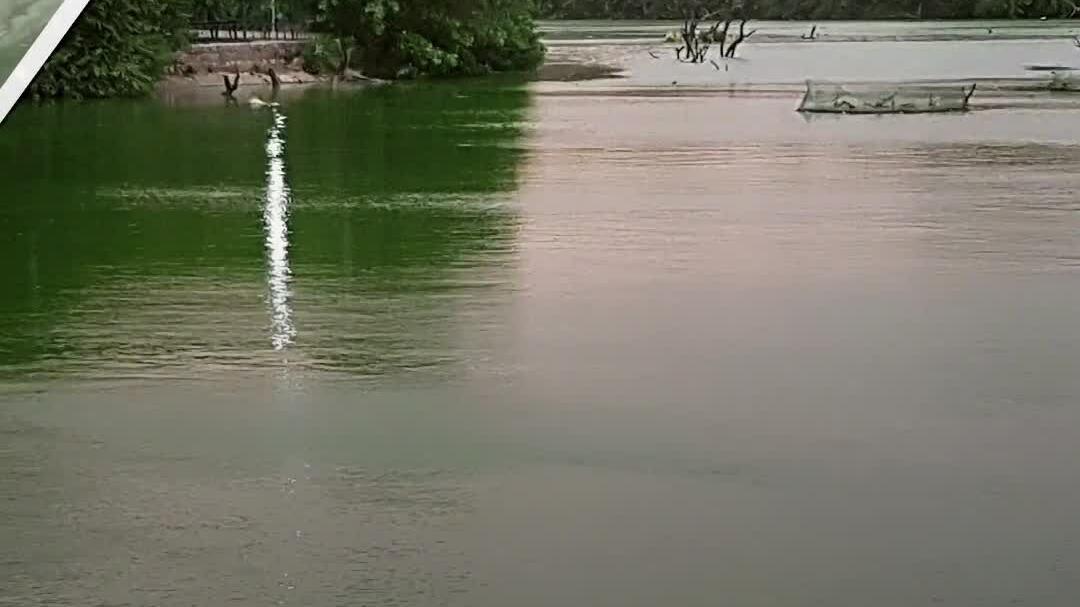 Cặp kỹ sư 'hồi sinh' hồ nước ô nhiễm nặng ở Ấn Độ
