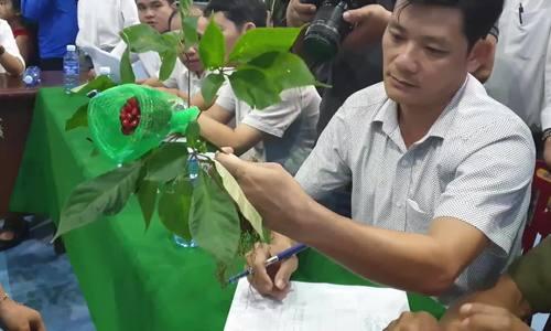 Người dân Quảng Nam mang củ sâm trị giá hơn 100 triệu đồng đi thi