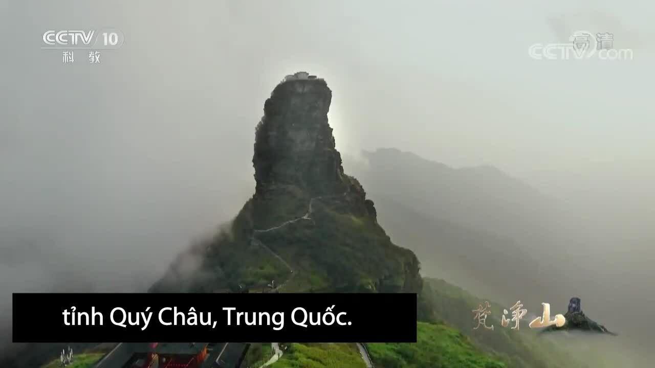 Dãy núi bảo tồn 2.000 động thực vật hoang dã ở Trung Quốc