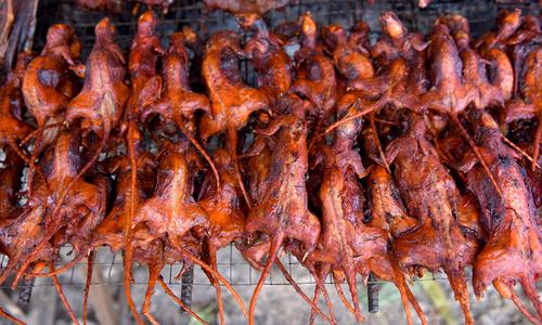 Món chuột đồng ướp gia vị nướng được dân Campuchia yêu thích