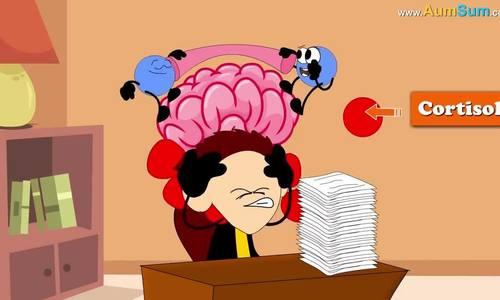 Những tác động lên não bộ khi bị căng thẳng
