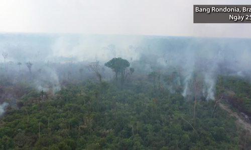 Cháy lớn tiếp tục càn quét rừng Amazon