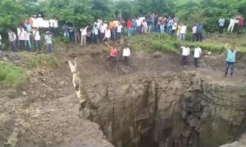 Người đàn ông mạo hiểm xuống giếng sâu 12 m để cứu cá sấu
