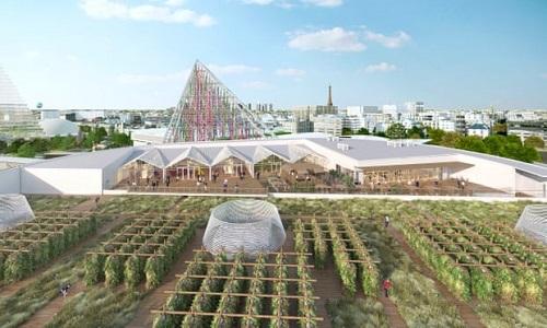 Paris sắp mở trang trại trồng rau lớn nhất thế giới trên nóc nhà