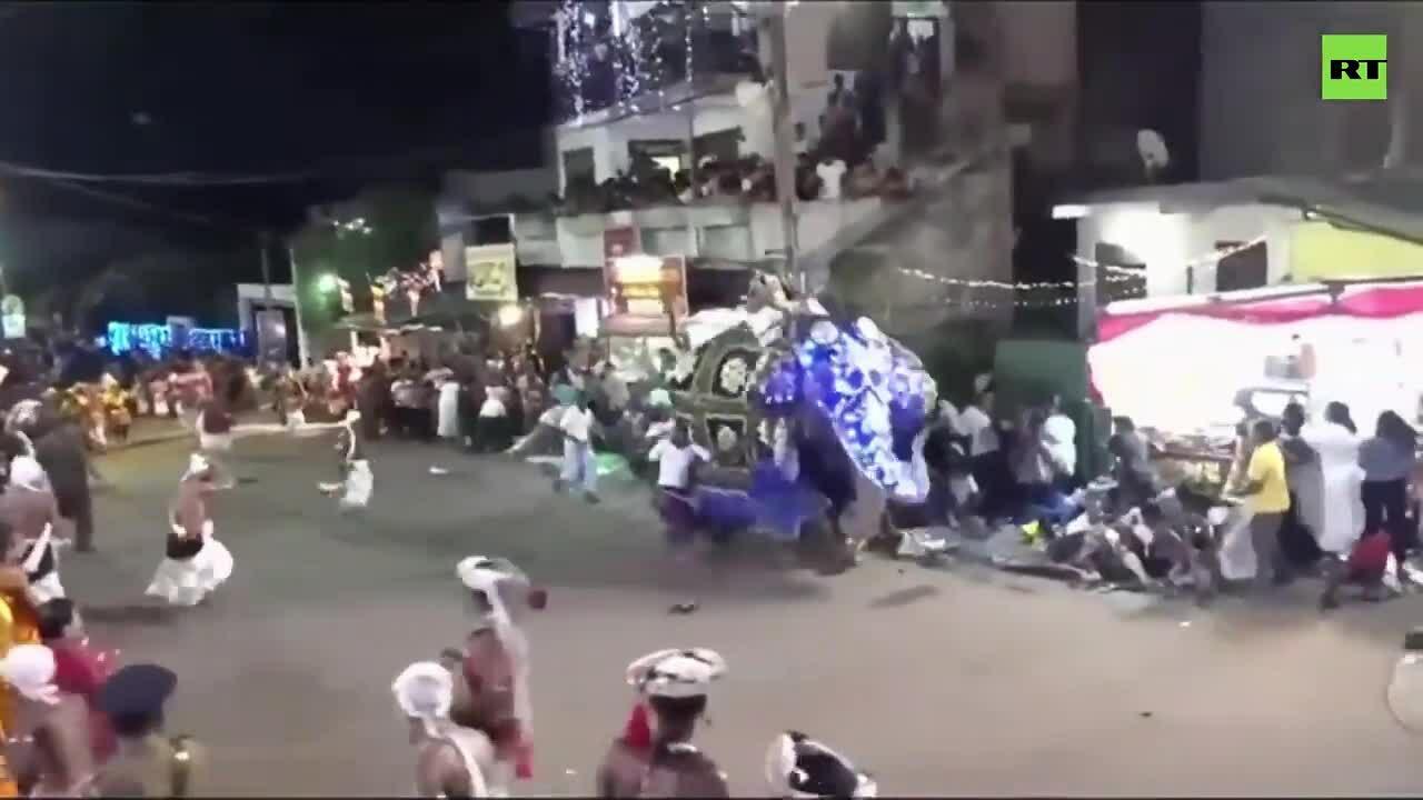 Voi nổi điên khiến 18 người bị thương