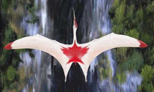 Thằn lằn bay có sải cánh dài gấp đôi hươu cao cổ