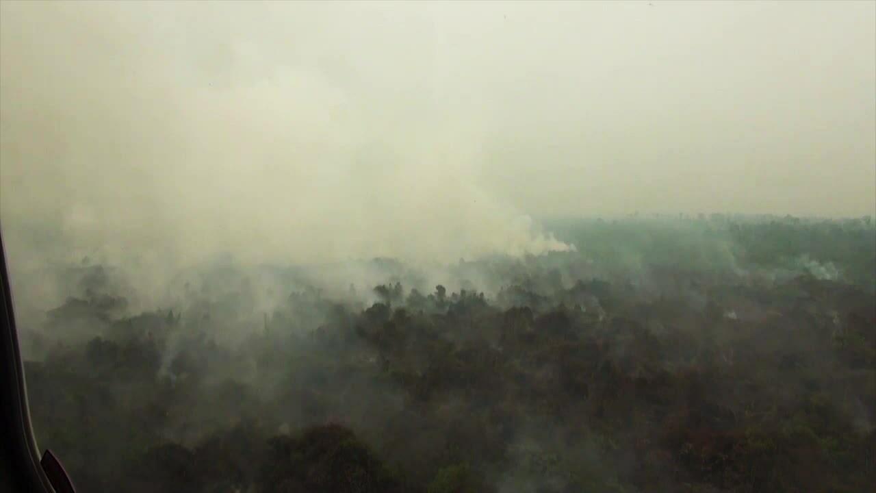 Khói cháy rừng bao phủ bầu trời trên đảo Borneo và Sumatra