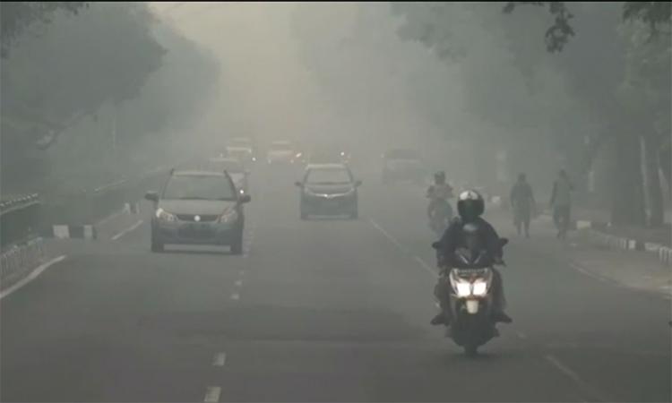 Cuộc sống trong khói cháy rừng