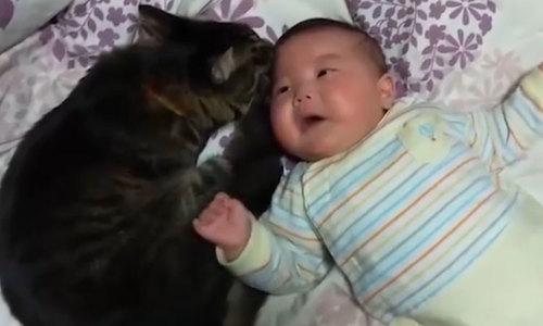 Em bé ngoan ngoãn khi được mèo dỗ