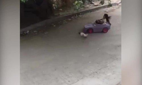 Bé gái 'say sữa' lái ô tô khiến cả làng cười bò